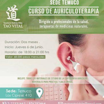 Curso de Auriculoterapia – Temuco