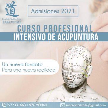 Curso profesional intensivo de acupuntura