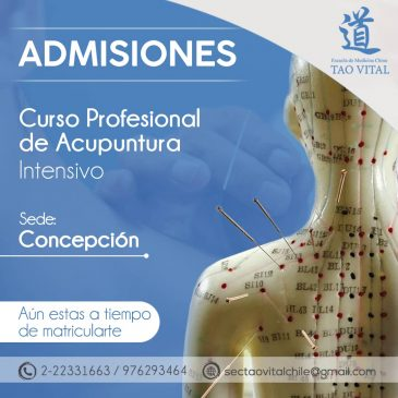 Curso Profesional de Acupuntura – Concepción