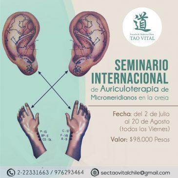 Seminario Internacional de Auticuloterapia